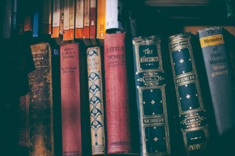 books novels classics
