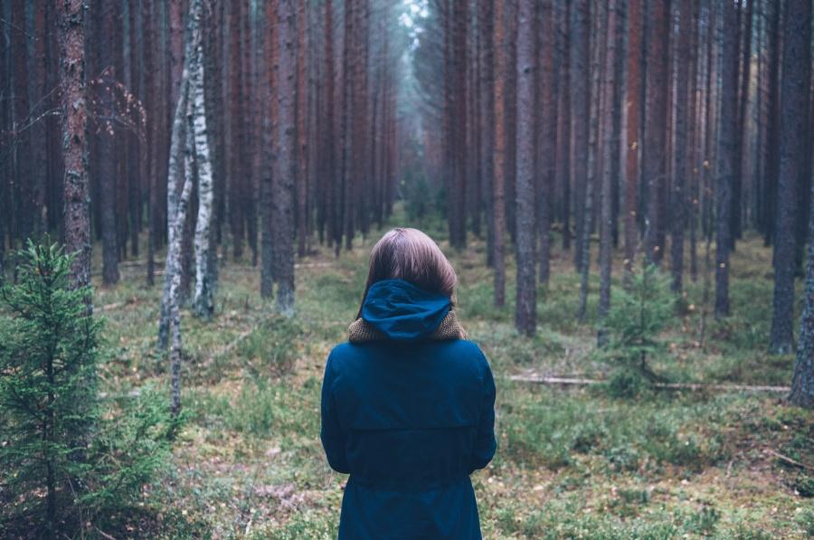 jordan sanchez girl woman forest woods