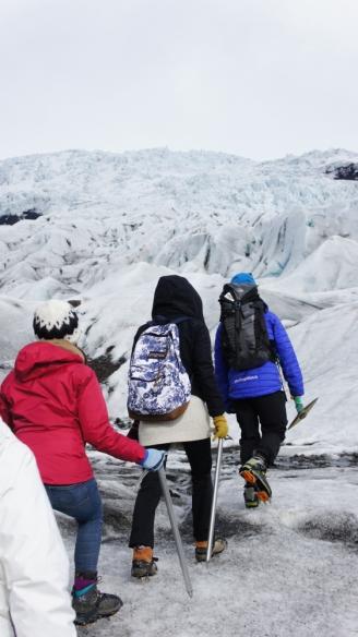 iceland-falljokull-1